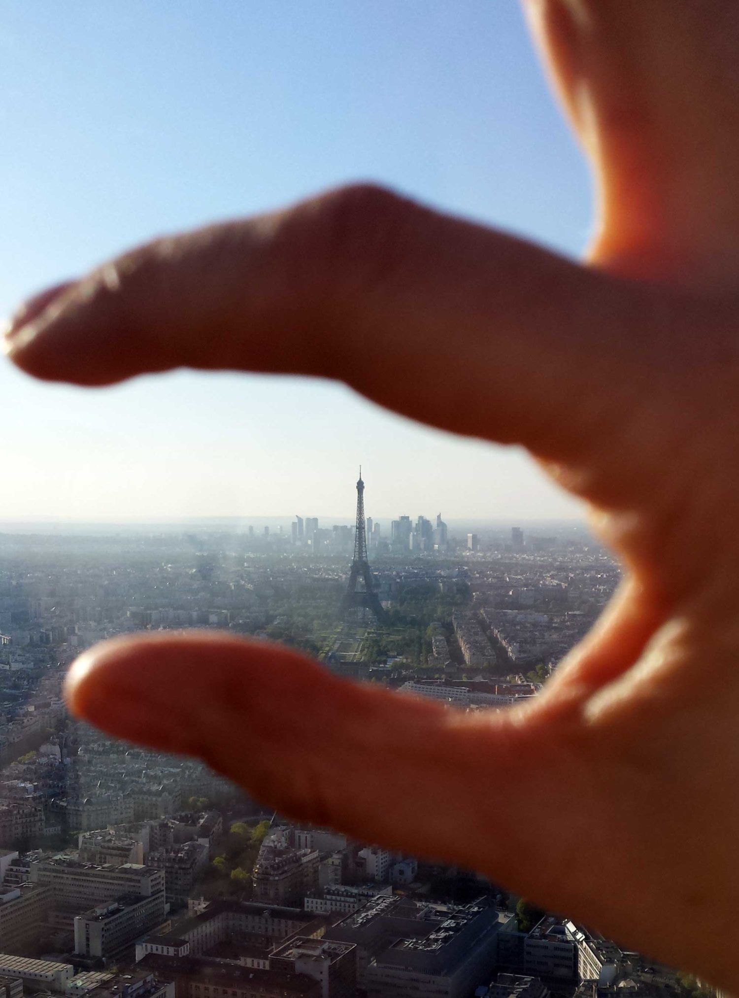 The Eiffel Tower from the Montparnasse Tower