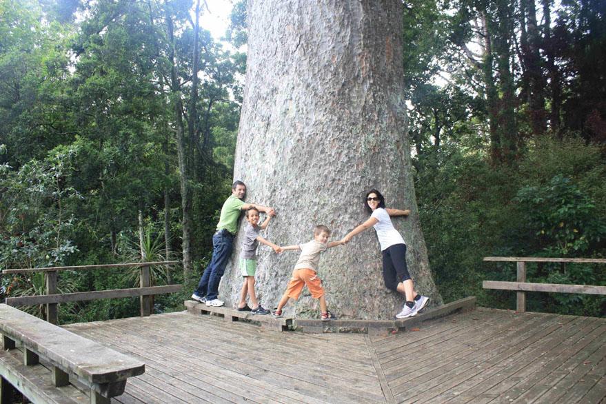 famille autour d'un arbre en nouvelle zélande