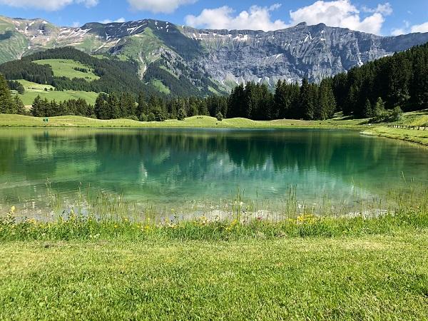 Partir à la montagne l'été à la découverte de paysages magnifiques