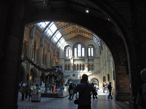 Que visiter à Londres quand il pleut, musée Natural History Museum