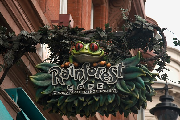 Aller au restaurant Rainforest Café quand il pleut à Londres